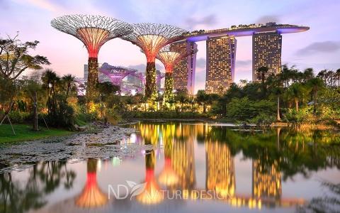 Singapore_Parks_Pond